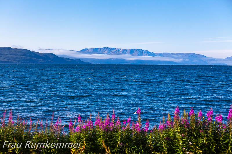 kg_120814_altafjord_6721