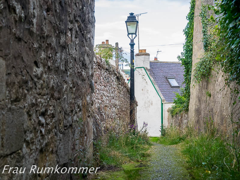 KG_150826_Cromarty_8260729