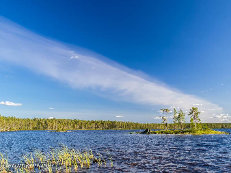 RP_2012_08_10_ØvrePasvik_062