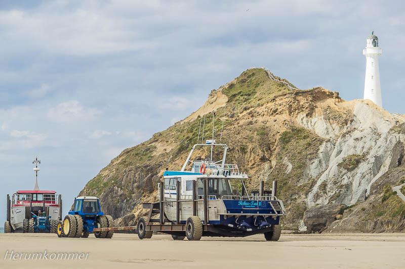 RP_2013_11_04_Castlepoint_088